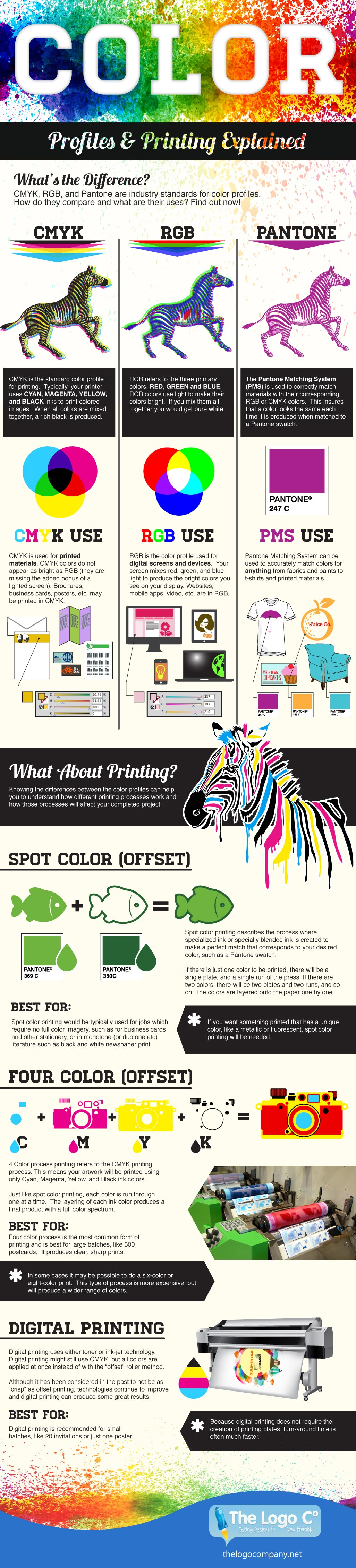 Understanding Color Profiles Infographic from The Logo Company